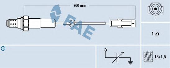 FAE 77101