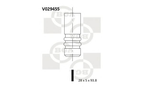 BGA v029455